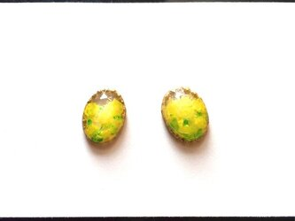 黄色い花の絵画ぷっくりピアス/イヤリングの画像