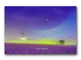 「やさしい時間」 ほっこり癒しのイラストポストカード2枚組 No.1041の画像