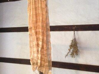 二重シルク 背高泡立草の画像