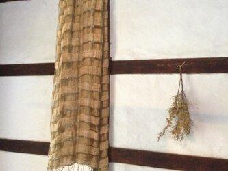二重シルク ヤマモモの画像