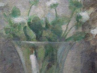 白い花/2(ガラスの花びんの)の画像