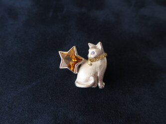 SV Cat and Star broochの画像