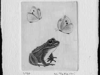 蝶と蛙 / 銅版画 (作品のみ)の画像