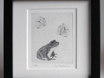 蝶と蛙 / 銅版画 (額あり)の画像