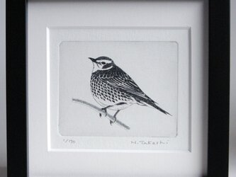 小鳥・2020 / 銅版画 (額あり)の画像