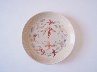 6寸皿(翼竜)の画像