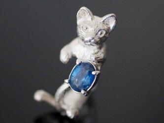 カイヤナイト猫リングの画像