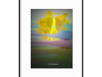 「泣けど叫べど」 ほっこり癒しのイラストA4サイズポスター No.731の画像