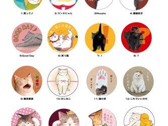 猫まみれの丸い缶バッチ いろいろ選べる二個セットの画像