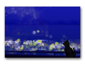 「自問自答の日々」 ほっこり癒しのイラストポストカード2枚組 No.1046の画像