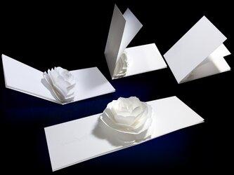 【お名前入れ】花のポップアップグリーティングカード〈ローズ〉forバースデー・ウェディング・アニバーサリーの画像