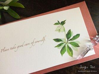 よりそう言葉カード *クリスマスローズ(二つ折り横長カード)の画像