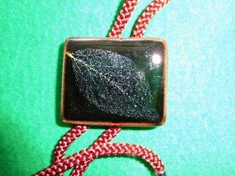 木の葉天目のループタイの画像