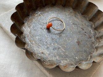 14kgf イタリア産サルデーニャ本珊瑚  wire ring(#~10)の画像