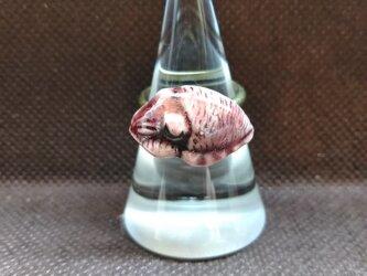 動物石 リング イカ(赤色)の画像
