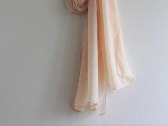 大人色 シルク<ひと枝の枇杷>の画像