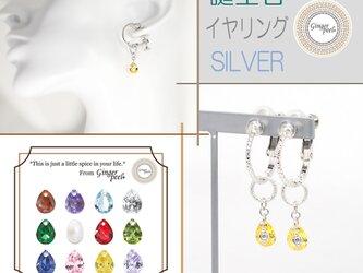 《2WAY》誕生石のイヤリング/SILVERの画像