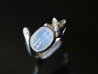 レインボームーンストーンいろどり猫リングオーバルの画像