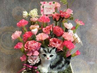 アメショ猫ちゃんとカーネーションのアレンジ Lの画像