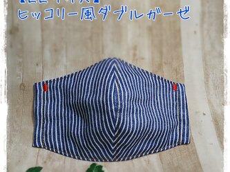 (LL)ヒッコリー風*ワイヤ入立体マスクの画像