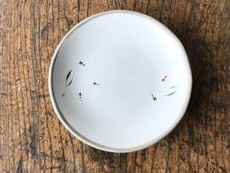 白化粧色絵 プレート 金魚の画像