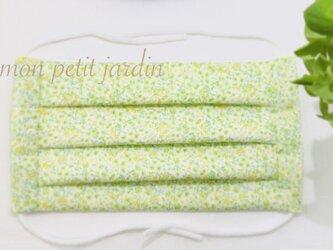 新緑と初夏 綿ガーゼ プリーツマスク(ゴム付き)の画像