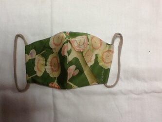 絹 大人用マスク 緑色の画像