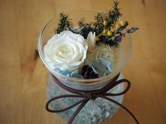 アロマボタニカルカップ(ベルグラス・ブルー)の画像