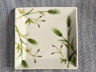 角取り皿  麦絵の画像