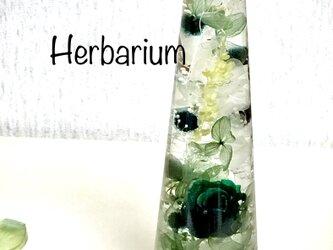 ハーバリウム deep Greenの画像