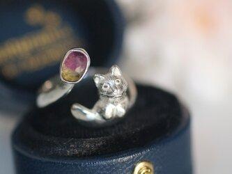 バイカラートルマリンすりすり猫リングの画像