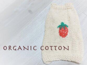 [オーガニックコットン・春夏] いちごのセーター(小型犬用・胴回り40)【オーダー可】の画像