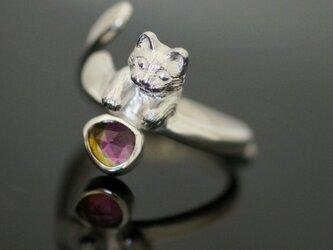 バイカラートルマリンに触れたい猫リングの画像