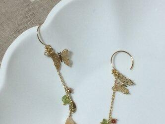 蝶と洋梨のピアスの画像
