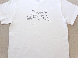 オリジナルTシャツ にゃんこの画像