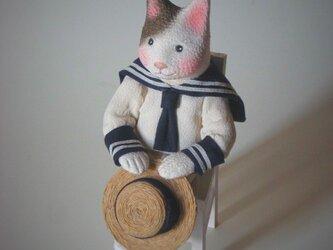縮緬福猫 夏服 その八の画像