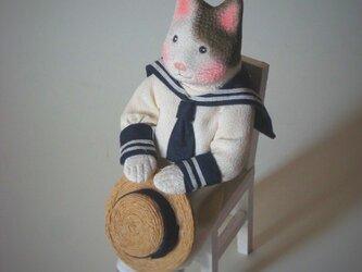 縮緬福猫 夏服 その九の画像
