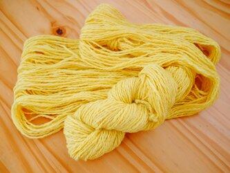 手紡ぎ糸<メリノ× エンジュ染め>の画像