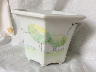 【訳あり】森の、植木鉢の画像