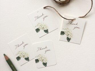 小さな白い紫陽花のメッセージカード タグ 40枚の画像