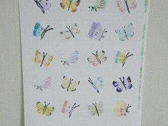 シール〈Butterfly-1〉の画像