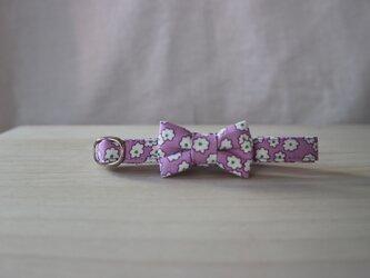 リボン首輪 Classic Flower purpleの画像