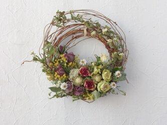 (再販)to U who love flowersの画像