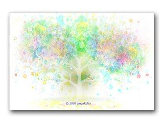「五月の芽吹きのささやき」 ほっこり癒しのイラストポストカード2枚組 No.1060の画像
