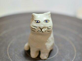 cat b1 の画像
