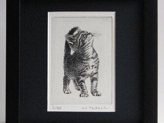 アメリカンショートヘアー・2020/ 銅版画 (ブラック額あり)の画像