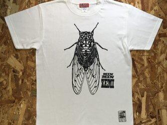 昆虫 デザイン Tシャツ /ミンミンゼミ Tシャツの画像