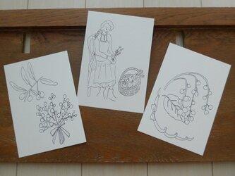 【大人のぬり絵】木の実x3枚セット(ポストカード)の画像