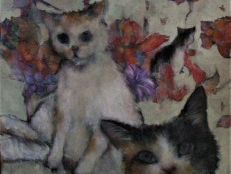 オリジナル画猫乱舞」1の画像