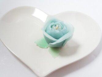light blue roseの画像